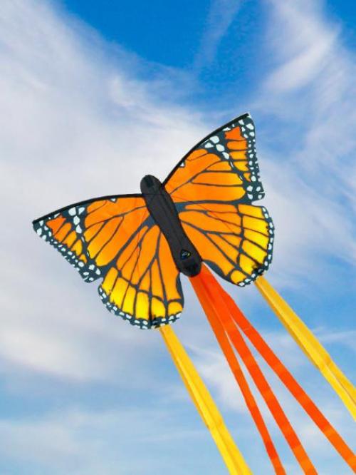 HQ Бабочка Монарх 52 см