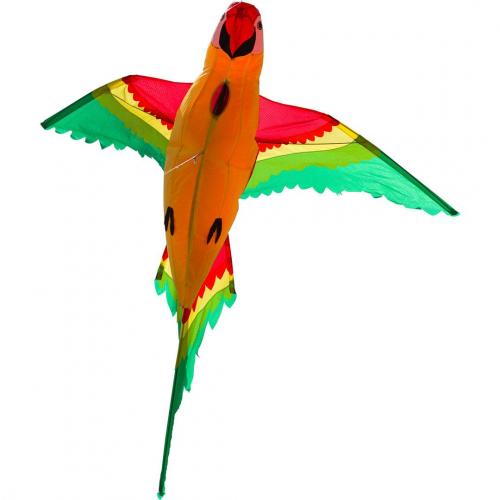 HQ Попугай 3D