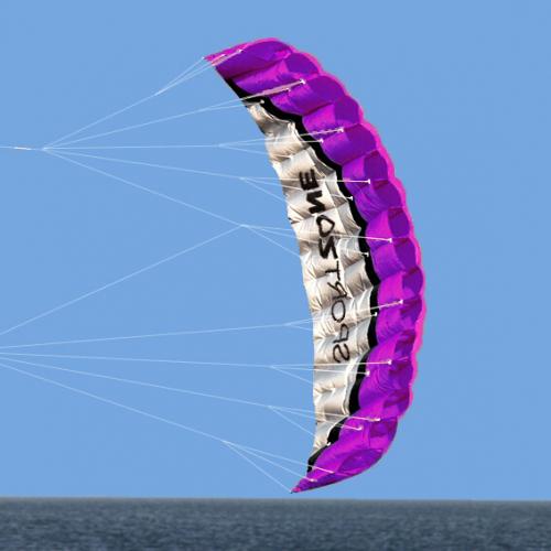Кайт Sport Zone Purple 1.8 m