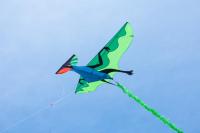 HQ Летающий Динозавр 3D