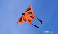 Бабочка Оранжевая